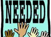 Cabin Counselor Volunteers Needed