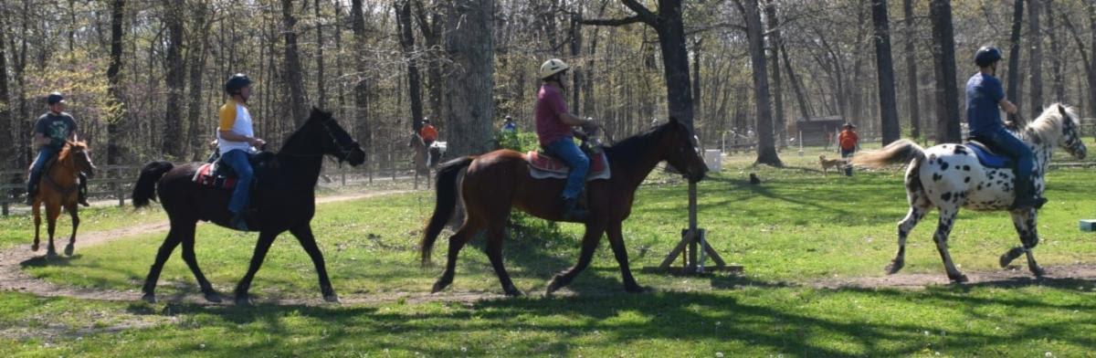 Wrangle & Ride