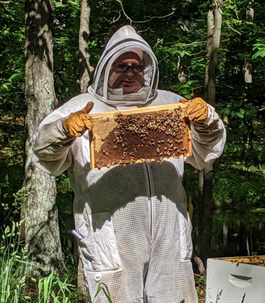 Hive Happenings
